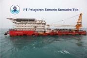 Sejarah dan Profil Singkat TAMU (Pelayaran Tamarin Samudra Tbk)